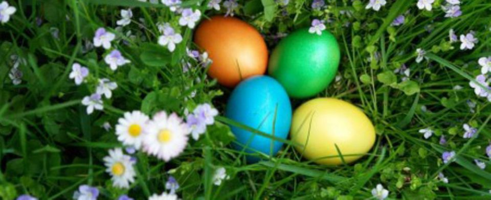 Gefärbte Ostereier zaubern Frühlingsflair