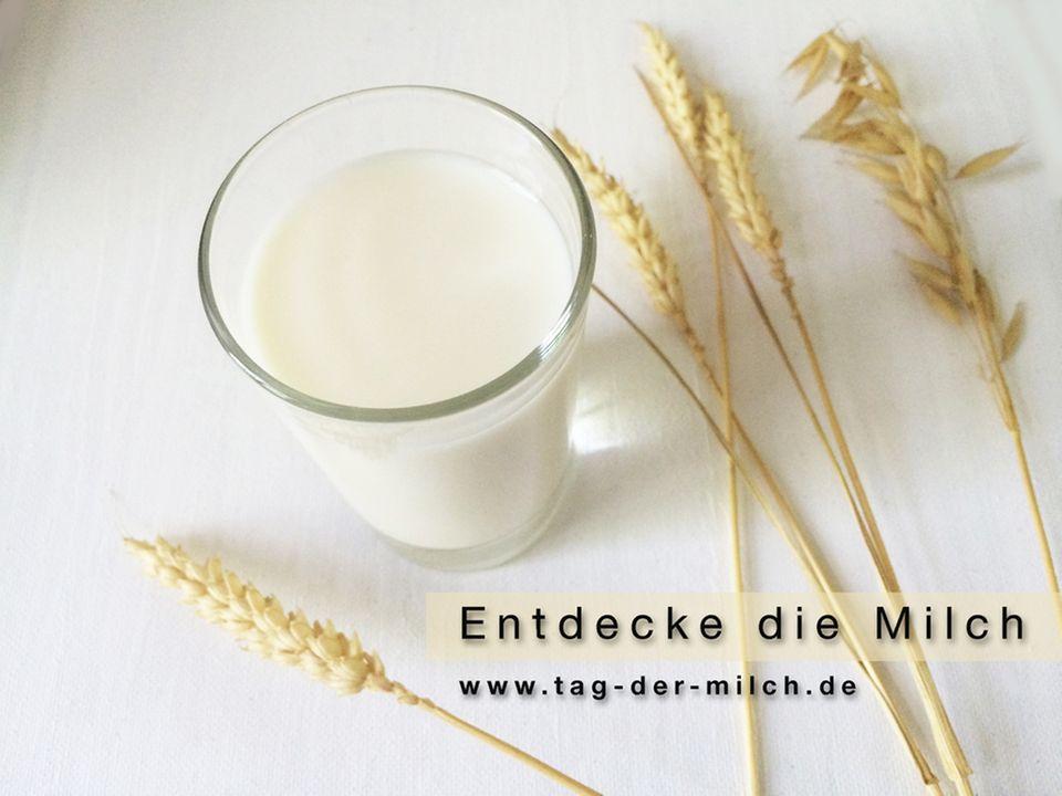 Am 01. Juni ist internationaler Tag der Milch
