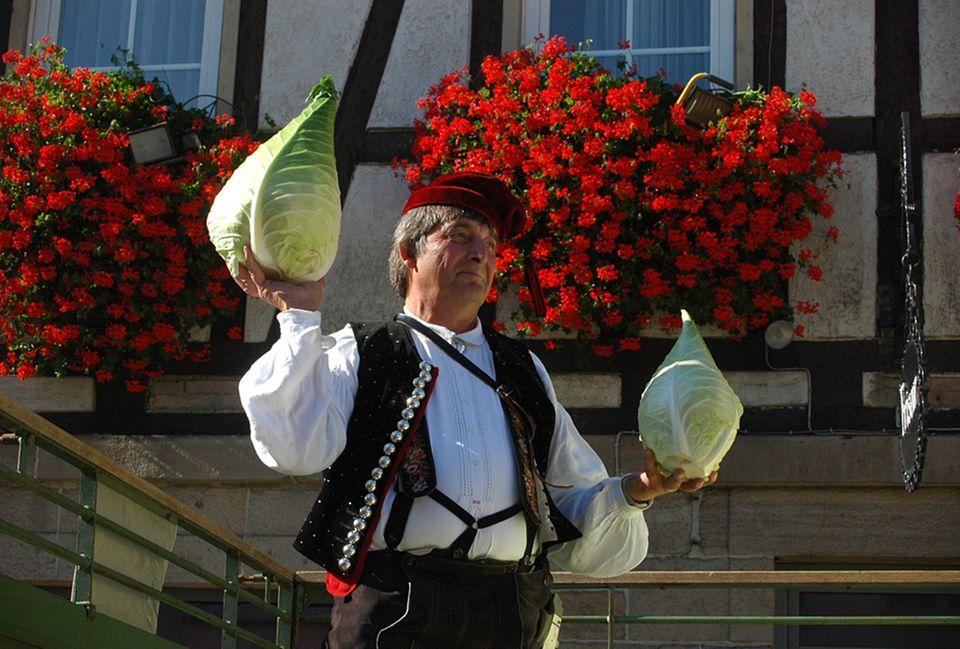 Der Krautanbau hat in dem Gebiet Fildern eine lange Tradition