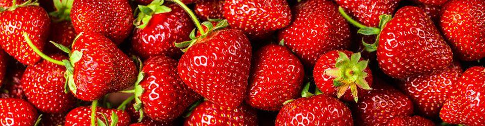 Sommer-Glück: frisch gepflückte Erdbeeren