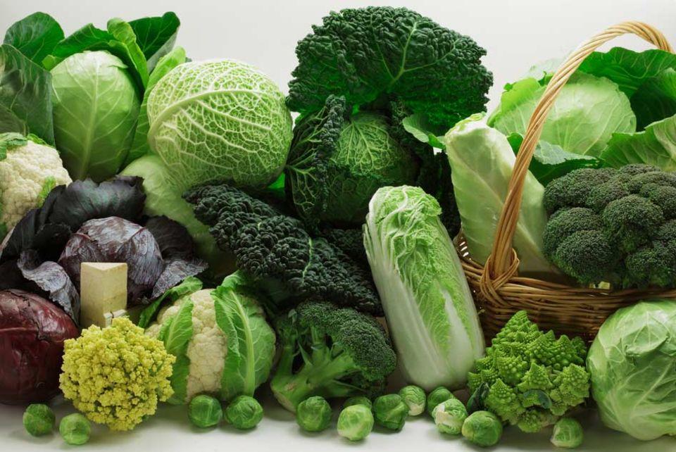 Grün, grün und nochmals grün: Kohlsorten auf einen Blick