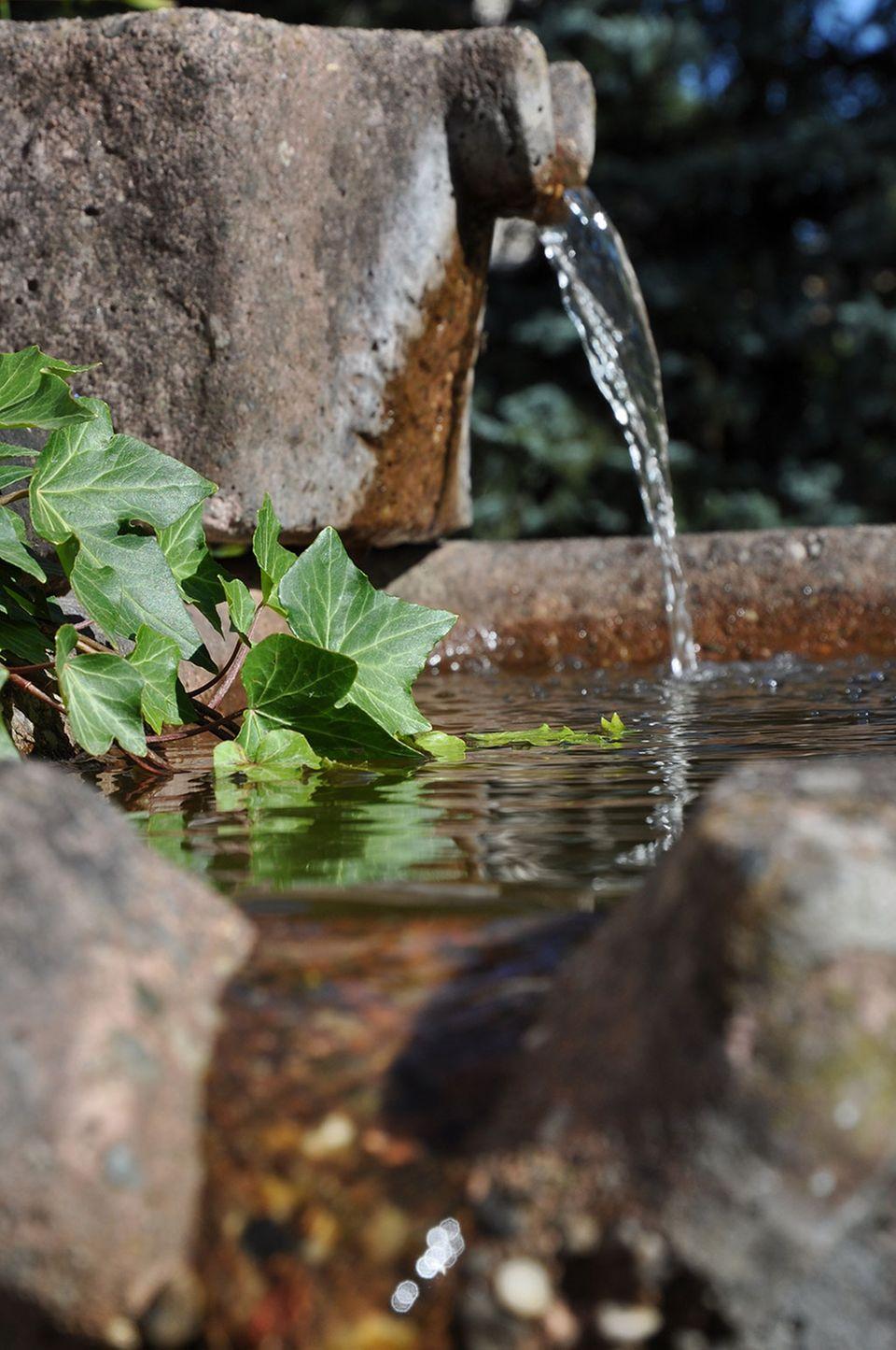 Wasser frisch aus der Quelle