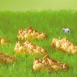 Käseschuhe