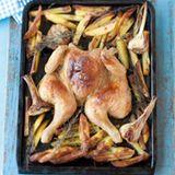 Plattes Huhn mit Pommes
