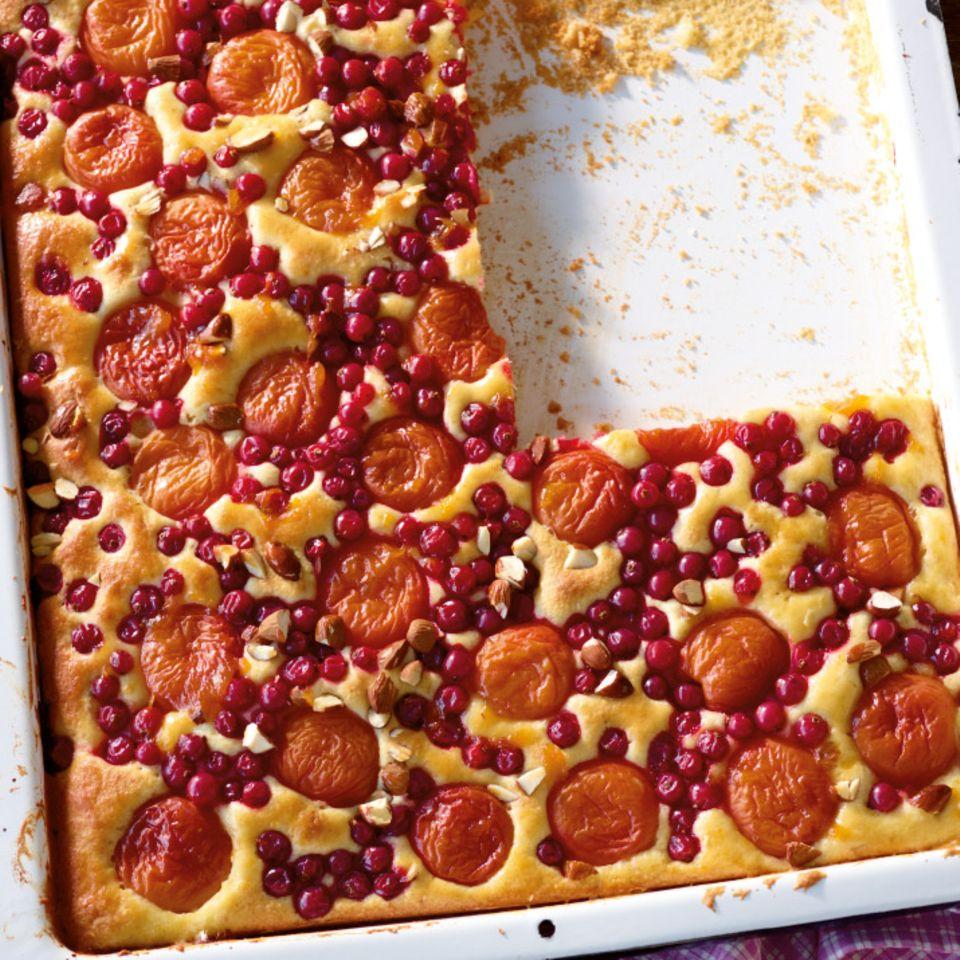 Aprikosen-Johannisbeer-Kuchen