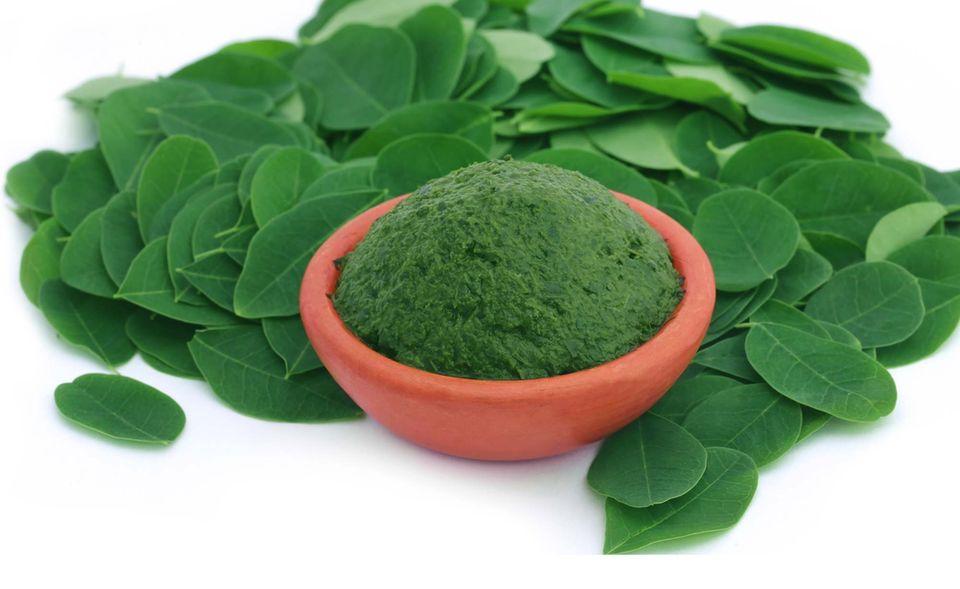 Moringablätter und Pulver liefern viele wertvolle Inhaltsstoffe