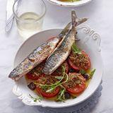 Gratinierte Tomaten mit Makrele