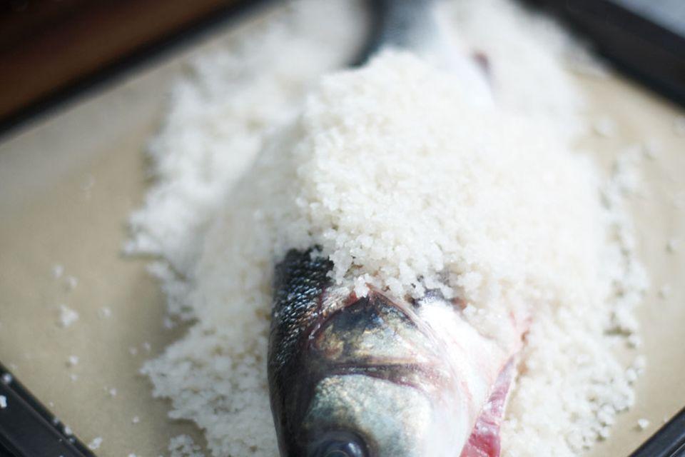 Loup de mer in der Salzkruste