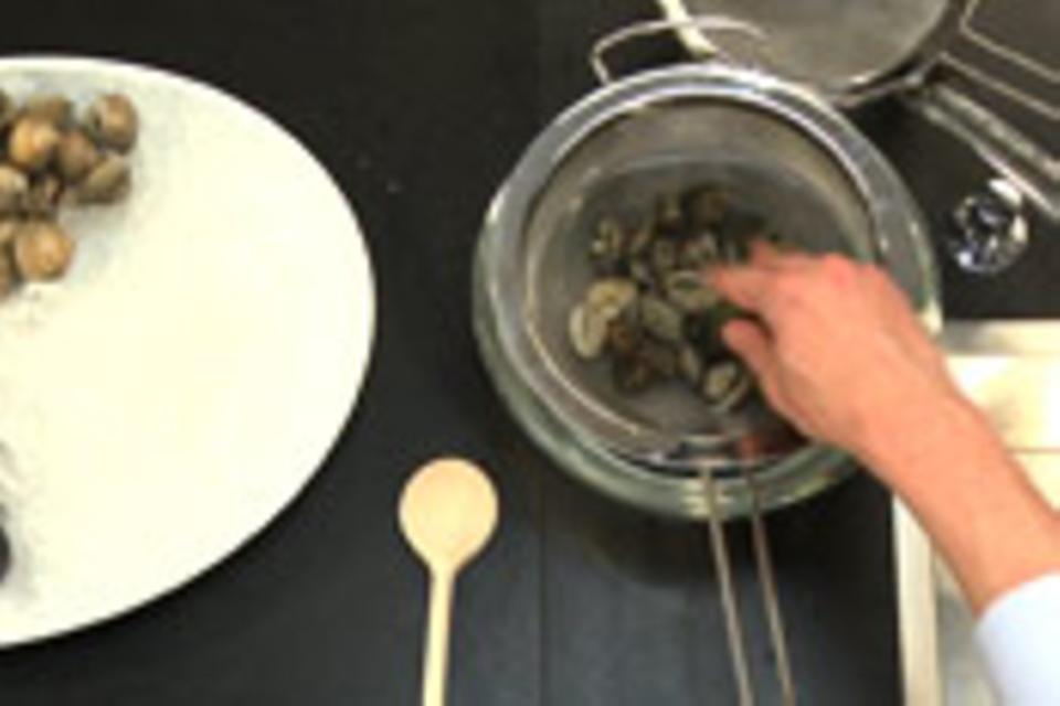 Venusmuscheln wässern