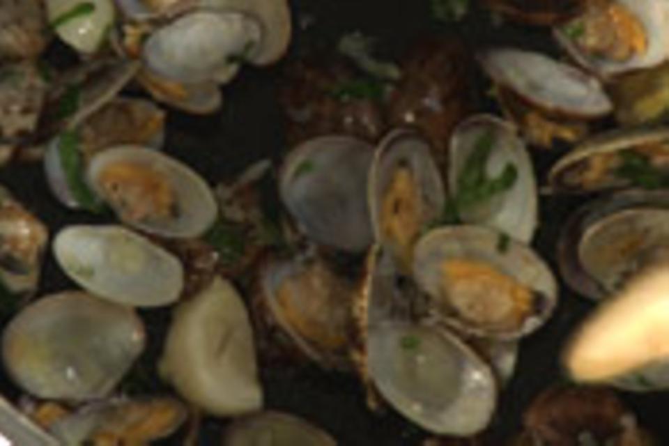 Muscheln in Fett schwenken