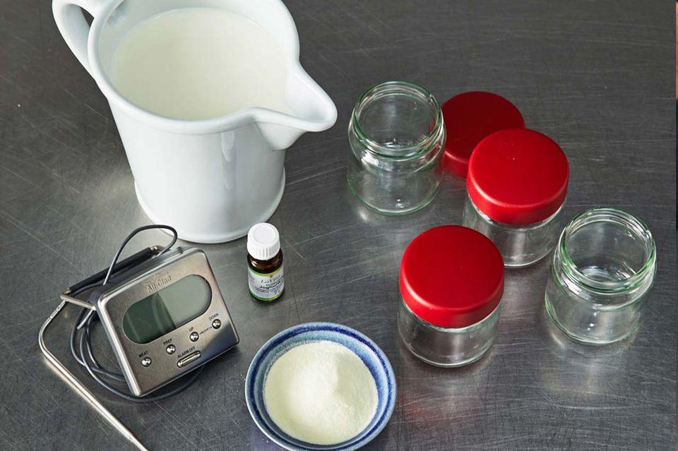 Grundzutaten für Joghurt