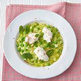 Grüner Erbsen-Risotto mit Zitronen-Ricotta
