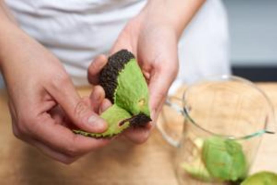 Avocado: Wissenswertes, Tipps und Rezepte