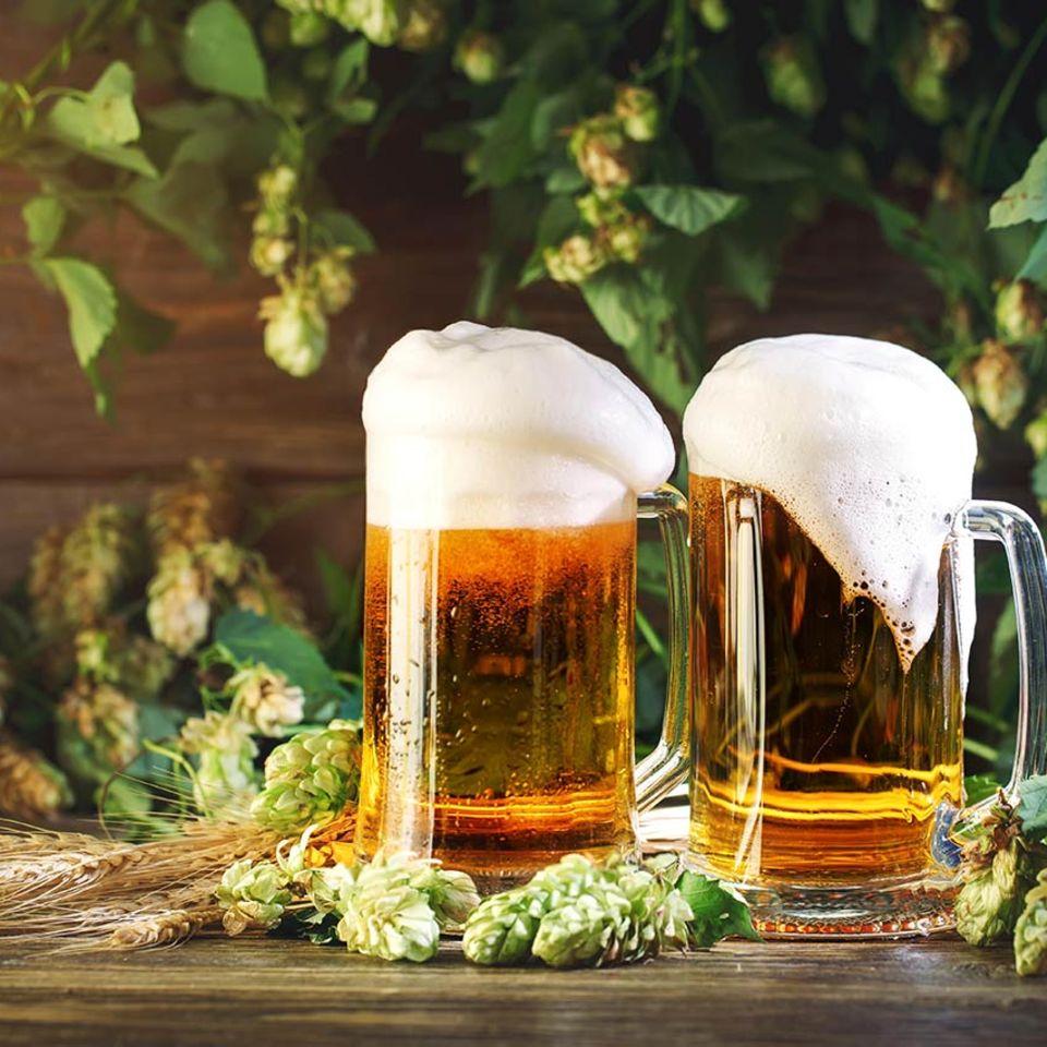 frisch gezapftes Bier mit Hopfen auf Tisch