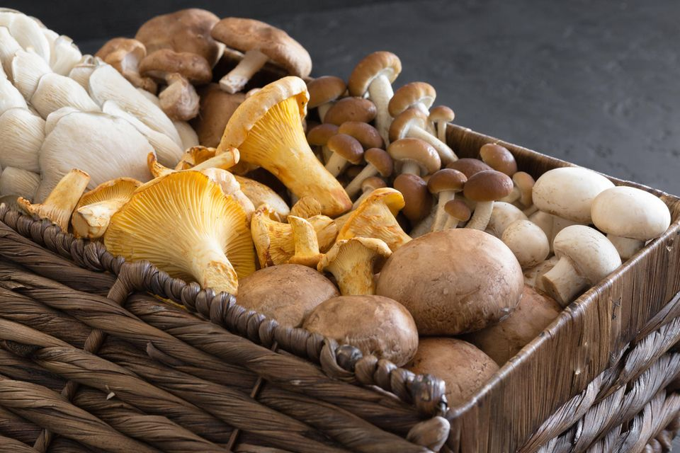 Ein Korb voller Pilze