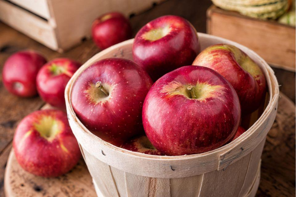 Frisch geerntete rote Äpfel