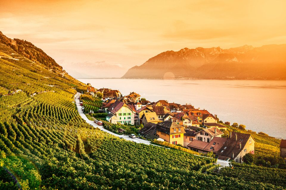 Schweiz Lavaux Weinberg-Terrassen und Genfer See