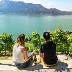 Wein trinken im Domaine Bovy Petite Terrasse in den Weinberg-Terrassen von Lavaux mit Blick auf den Genfer See