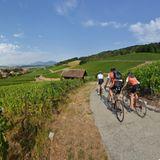 Bonvillars Panorama Radfahrer Genfer See
