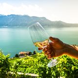 Weißwein draußen Genfer See